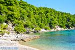 Milia Alonissos | Sporaden | De Griekse Gids foto 1