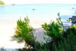Chrisi Milia   Alonissos Sporaden   De Griekse Gids foto 10
