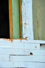 Alonissos stad (Chora) | Sporaden | De Griekse Gids foto 30