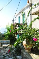 Alonissos stad (Chora) | Sporaden | De Griekse Gids foto 81